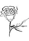 Kleurplaat roos