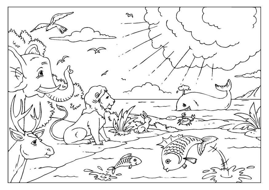 sunday school coloring pages creation - kleurplaat schepping afb 25954