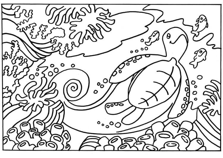 kleurplaten oceaan dieren