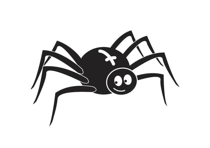 kleurplaat spin afb 18017