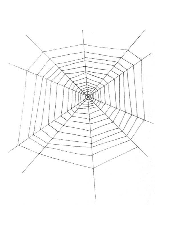 Kleurplaat Spinnenweb Afb 18972