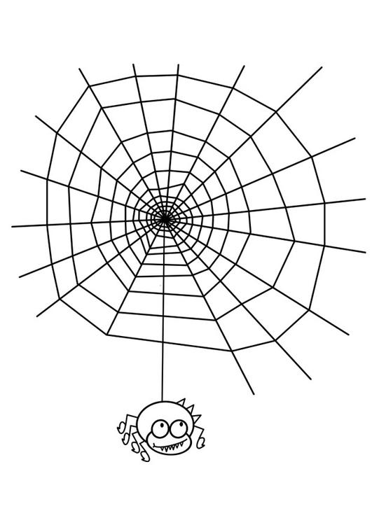 Kleurplaten Halloween Spinnen.Kleurplaat Spin
