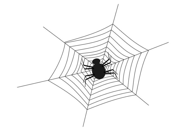 Kleurplaten Halloween Spinnen Archidev