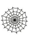 Kleurplaat spinnenweb