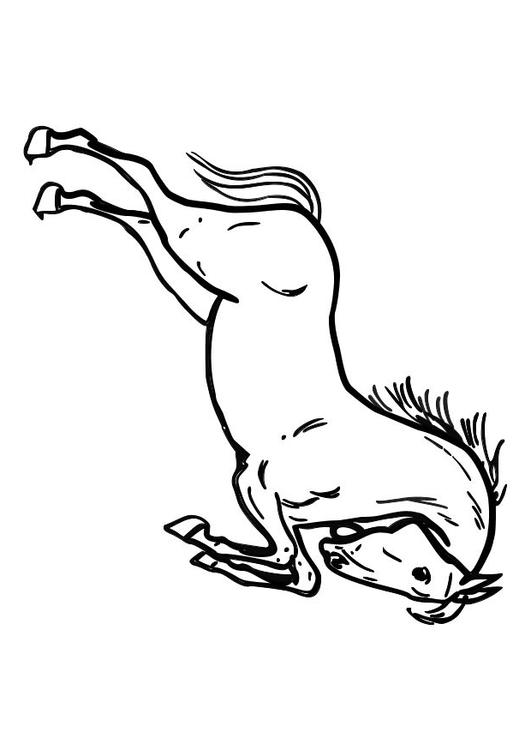 Kleurplaat Wilde Dieren Kleurplaat Springend Paard Afb 10362