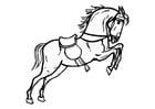 Kleurplaat springend paard