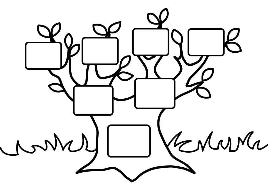 kleurplaat stamboom leeg gratis kleurplaten om te printen