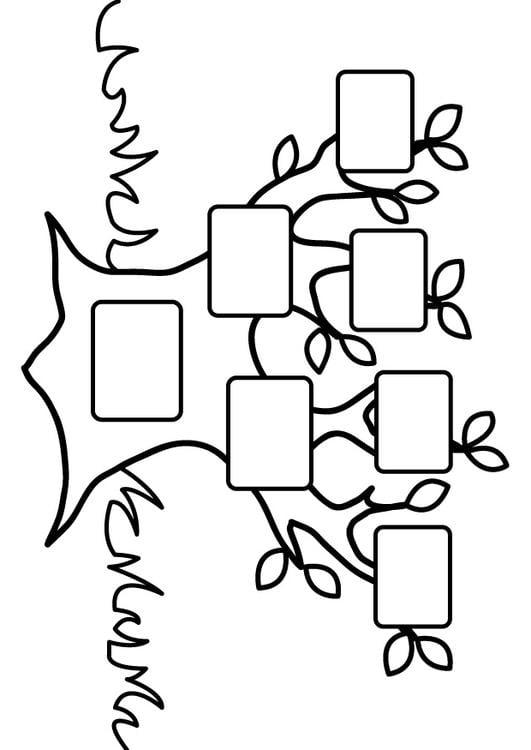 kleurplaat stamboom leeg afb 26875