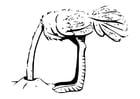Kleurplaat struisvogel met kop in zand