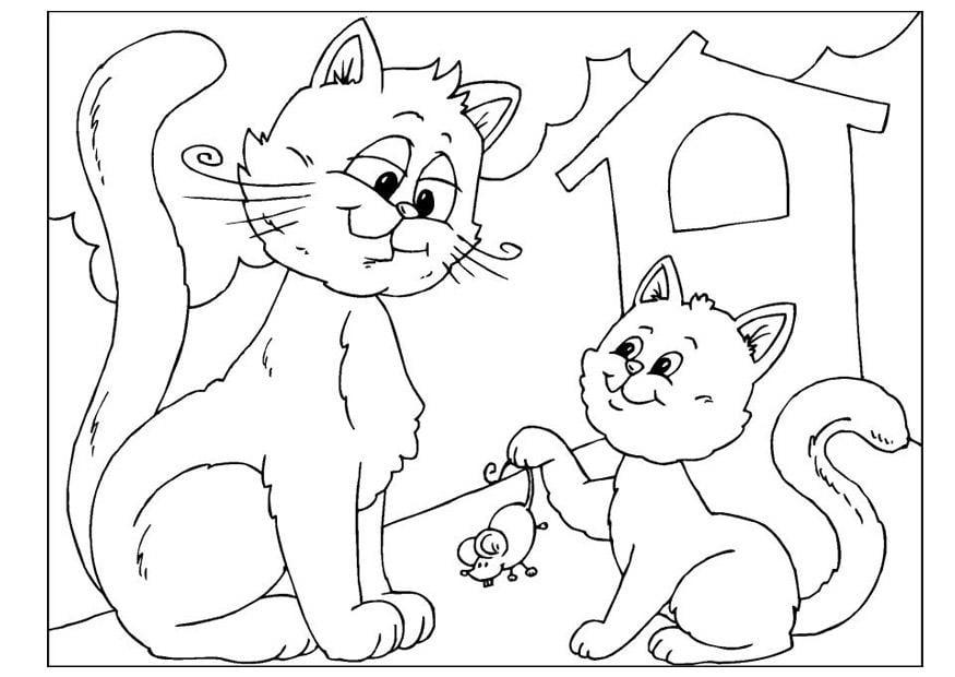 Kleurplaat Mus Kleurplaat Vaderdag Katten Afb 25890