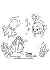 Kleurplaat vis en inktvis