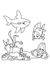 Kleurplaat vis met haai en krab