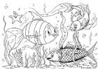 Kleurplaat vissen