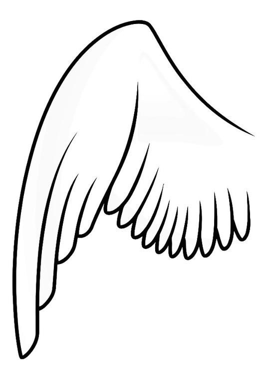 Kleurplaat Vleugel Links Afb 20687