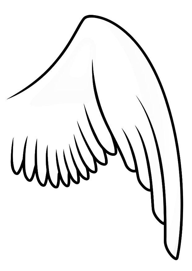 Kleurplaat Vleugel Rechts Afb 20697
