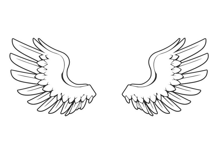 Kleurplaat Vleugels Afb 29042