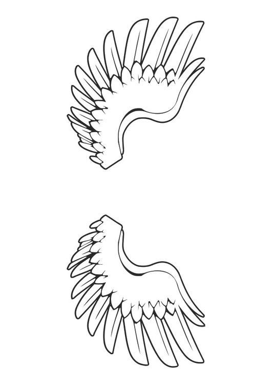 Paarden Kleurplaat Online Kleurplaat Vleugels Afb 29042 Images