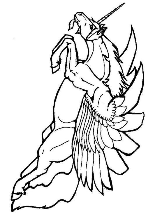 Kleurplaat Vliegende Eenhoorn Afb