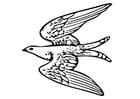 Kleurplaat vliegende vogel