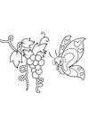 Kleurplaat vlinder bij druiven