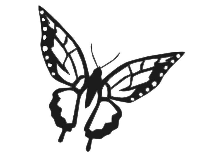Kleurplaten Kleine Vlinders.Kleurplaat Vlinder Afb 20672
