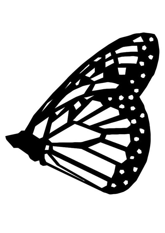 Kleurplaat Vlinder Afb 20693