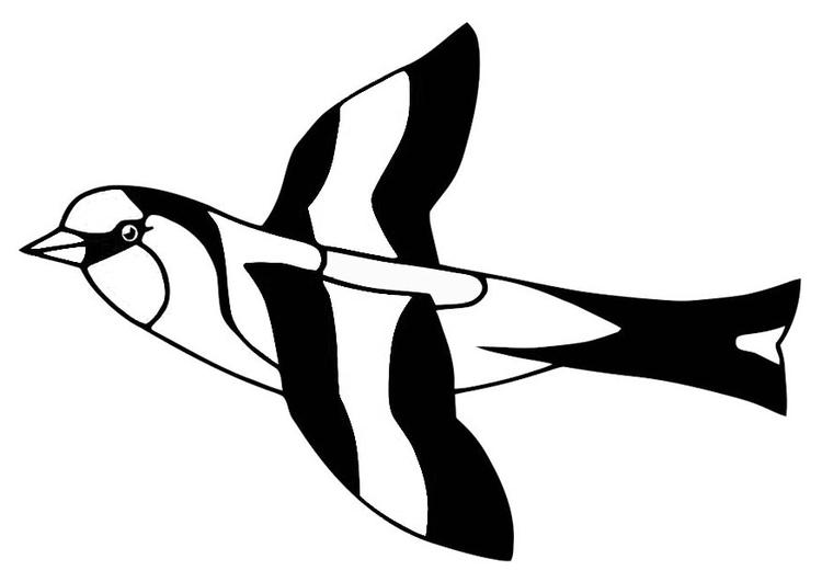 Kleurplaat Vogel Distelvink Afb 20686