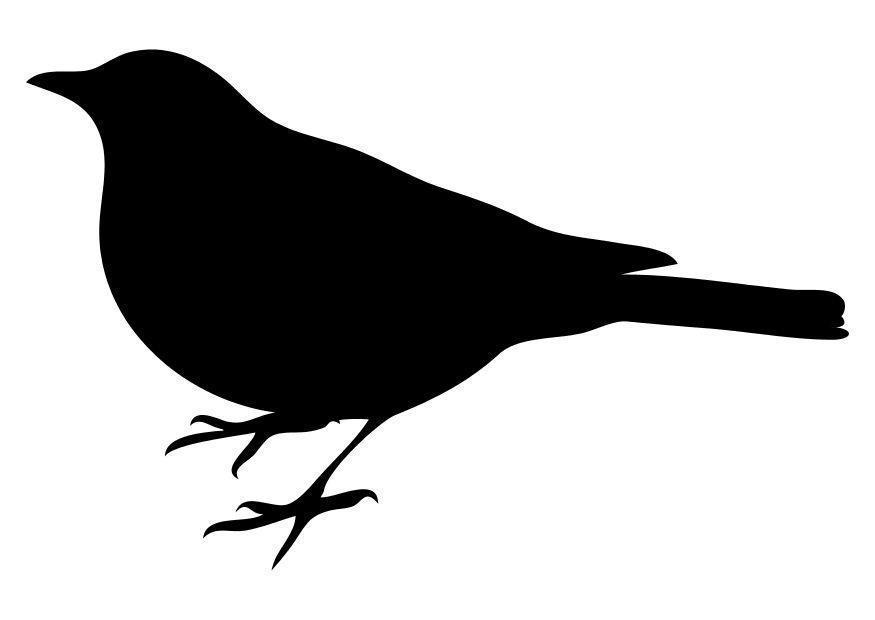 Kleurplaat Dieren Eenvoudig Kleurplaat Vogel Afb 10368