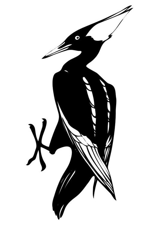 Kleurplaten Grote Vogels.Kleurplaat Vogel Gratis Kleurplaten Om Te Printen