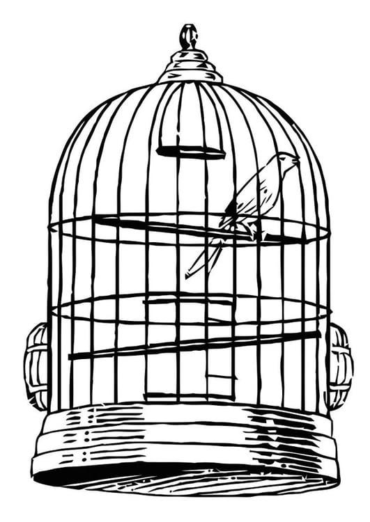 kleurplaat vogel in kooi gratis kleurplaten om te printen