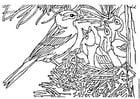 Kleurplaat vogel met nest