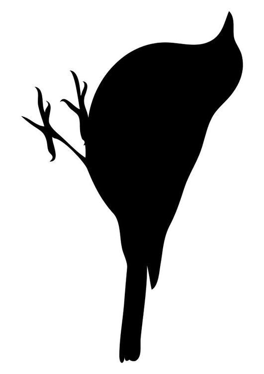 Kleurplaat Vogel Afb 10368