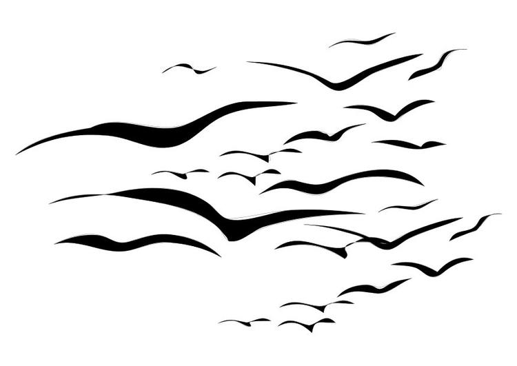 Kleurplaten Van Kleine Vogels.Kleurplaat Vogels Afb 10372