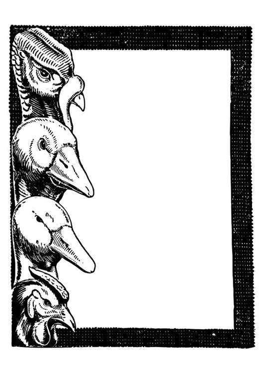 Kleurplaten Vogels Printen.Kleurplaat Vogels Gratis Kleurplaten Om Te Printen