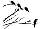 Kleurplaat vogels op tak