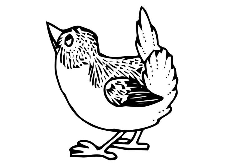 Kleurplaat Vogeltje Afb 20698