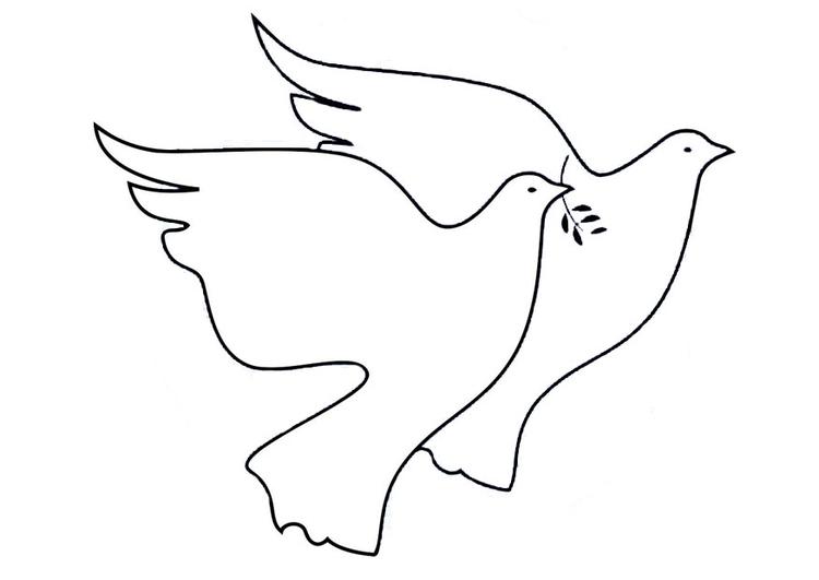 Vredesduif Kleurplaat Archidev