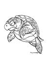 Kleurplaat zeeschildpad