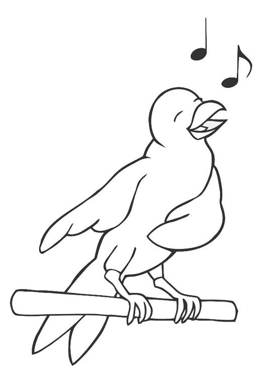 Kleurplaten Dieren Vogels.Kleurplaat Zingende Vogel Afb 19450