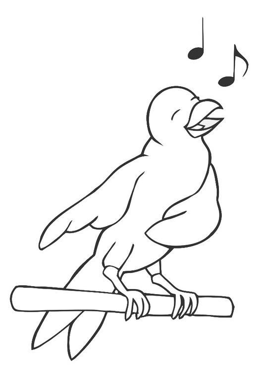 Afbeelding Vogel Kleurplaat Kleurplaat Zingende Vogel Afb 19450