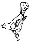 Kleurplaat zingende vogel