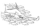 Kleurplaat zwaardvis in school vissen