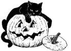 Kleurplaat zwarte kat op pompoen